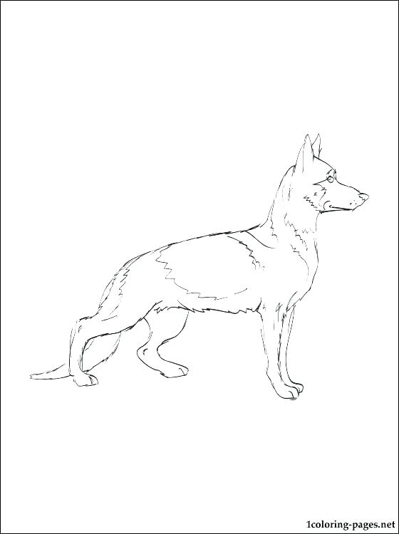 560x750 Black Lab Coloring Pages Dog Mother And Puppy Free Black Lab
