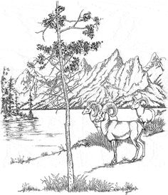 236x274 Yellowstone National Park Coloring Page Coloring