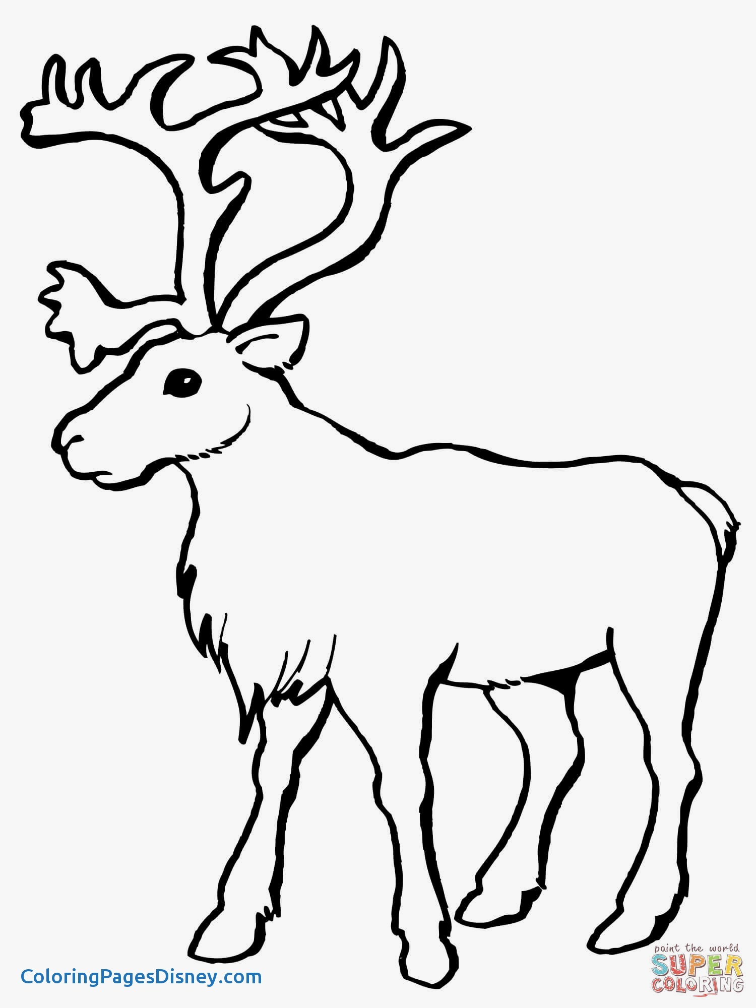 1500x2000 Caribou Coloring Pages Unique Coloring Book Yellowstone National