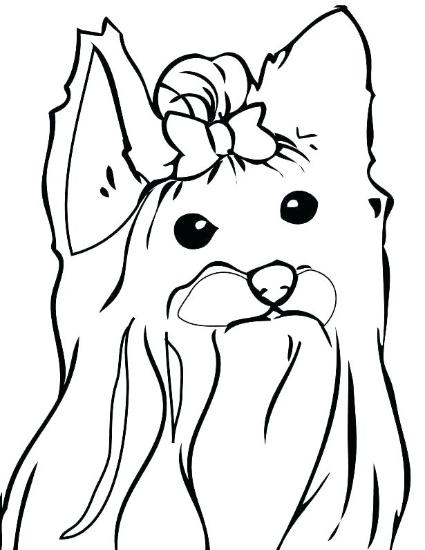 615x796 Yorkie Color Pages Coloring Page Teacup Coloring Pages Coloring