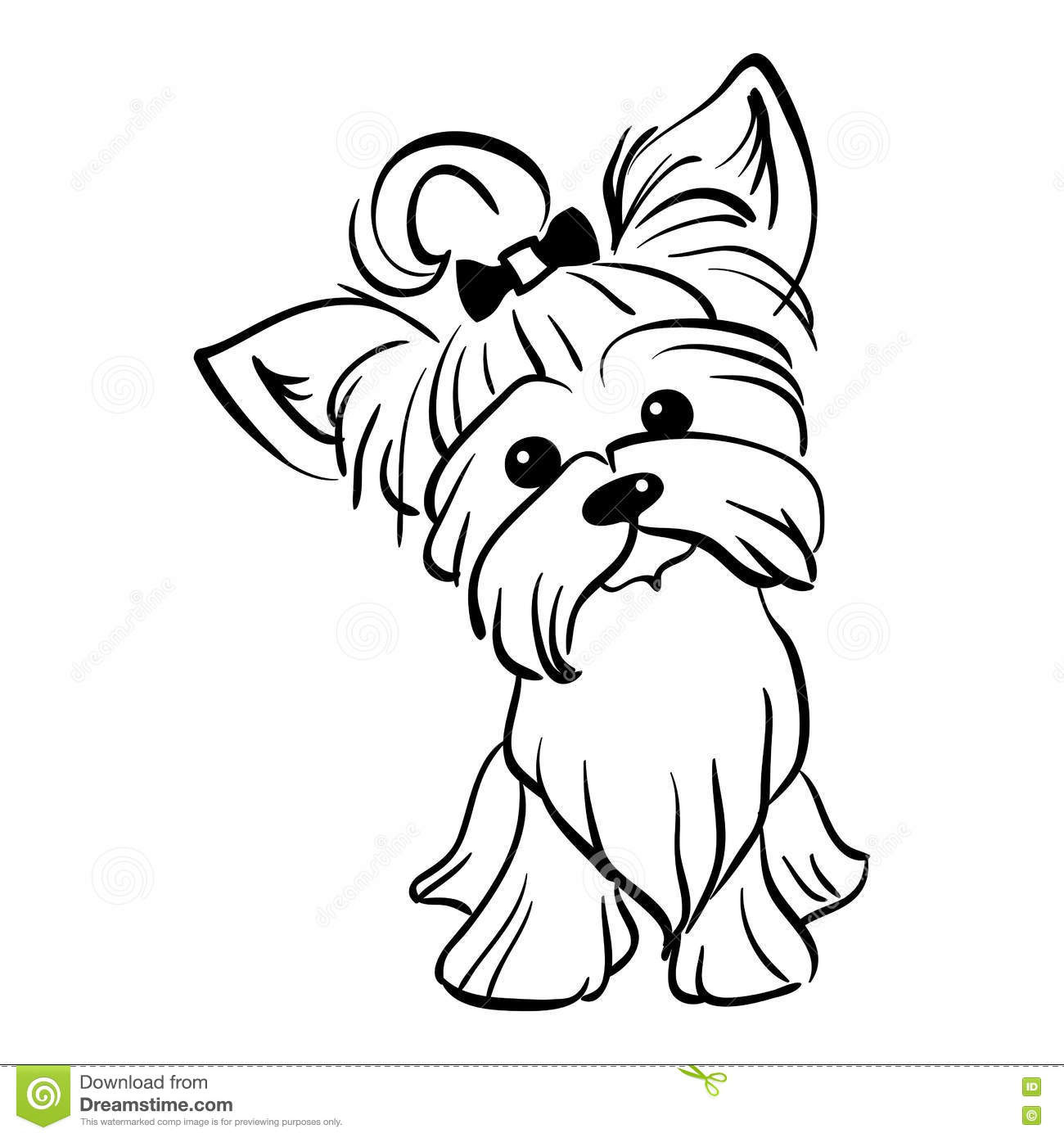 Yorkshire Terrier Coloring Pages