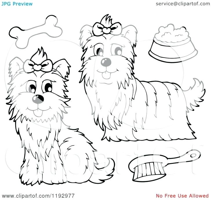 728x690 Coloring Pages With Free Coloring Pages Of Puppy Teacup Yorkie