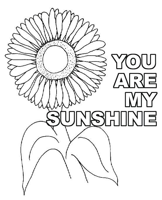 553x683 Detailed Sunflower Coloring Pages You Are My Sunshine Craft