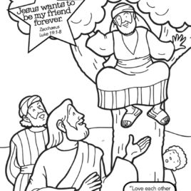 https://freesundayschoolcurriculum.weebly.com/uploads/1/2/5/0/12503916/lesson_56_zacchaeus.pdf | 268x268