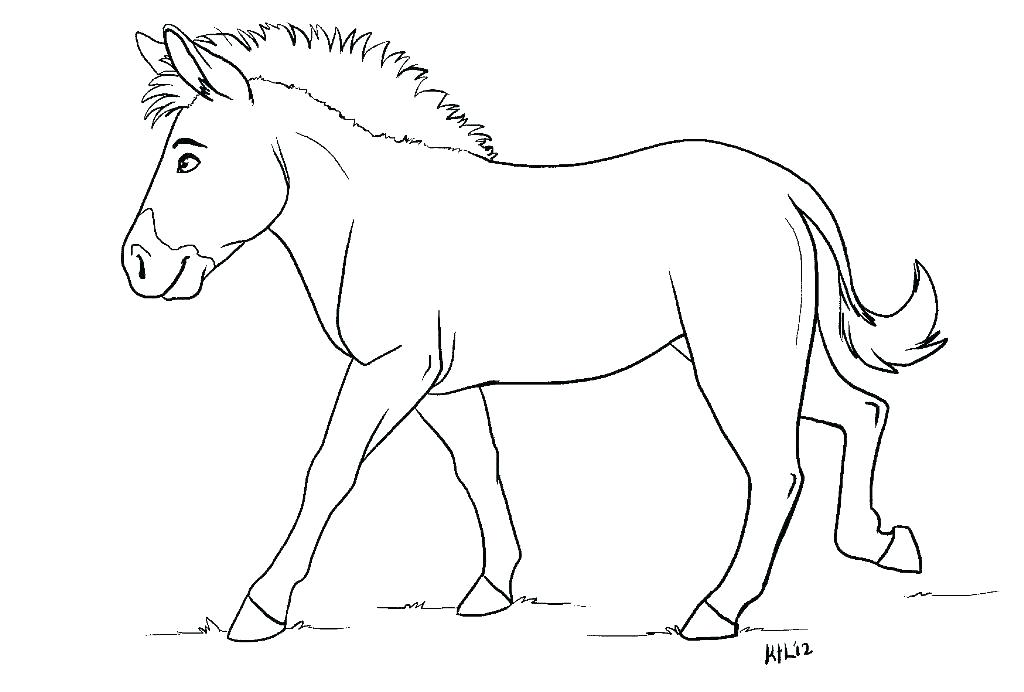 1024x692 Baby Zebra Coloring Pages Baby Zebra Coloring Pages Picture