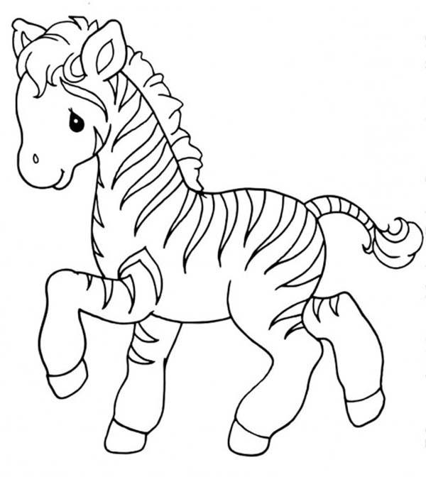 600x672 Sweet Little Zebra Coloring Page