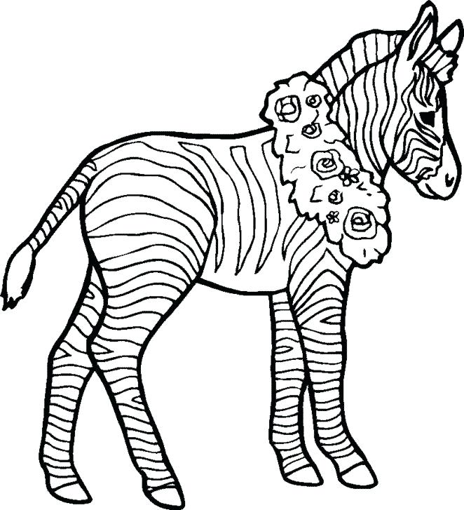 662x727 Zebra Coloring Pages Coloring Page Zebra Animals Printable