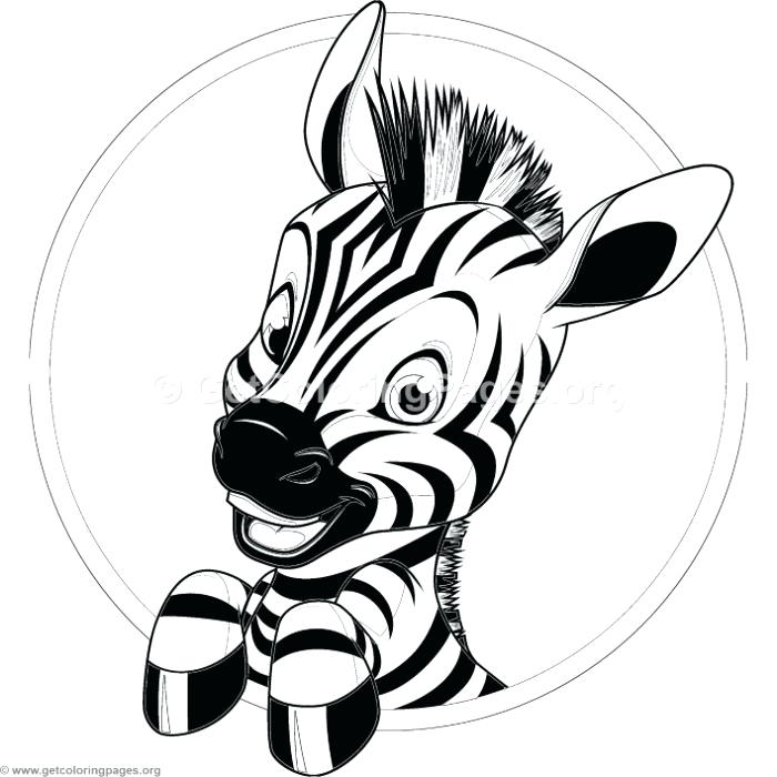 Zebra Coloring Pages At Getdrawings Com Free For Personal Use