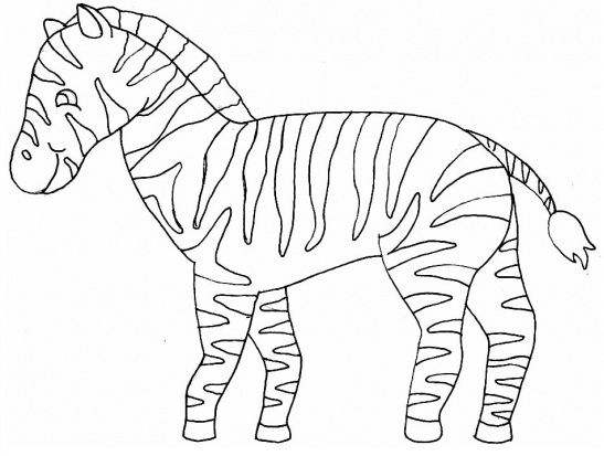 547x413 Coloring Pages Of Zebra Print For Kids