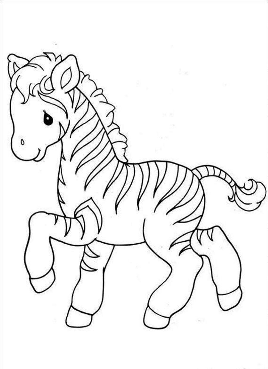 900x1240 Inspiring Idea Zebra Coloring Pages To Print Printable For Kids
