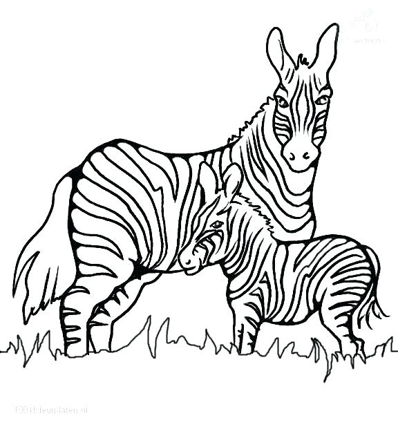 576x621 Animal Print Coloring Pages Jenonime Animal Print Coloring Pages