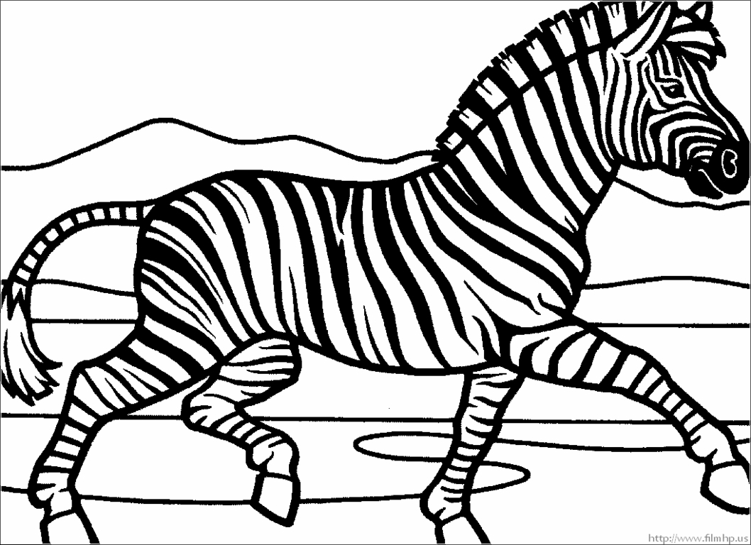 1058x768 Zebra Coloring Pages Free Printable Free Coloring For Kids