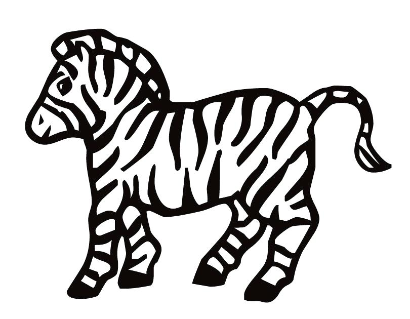 810x630 Zebra Coloring Pages Free Printable Mesmerizing On Print