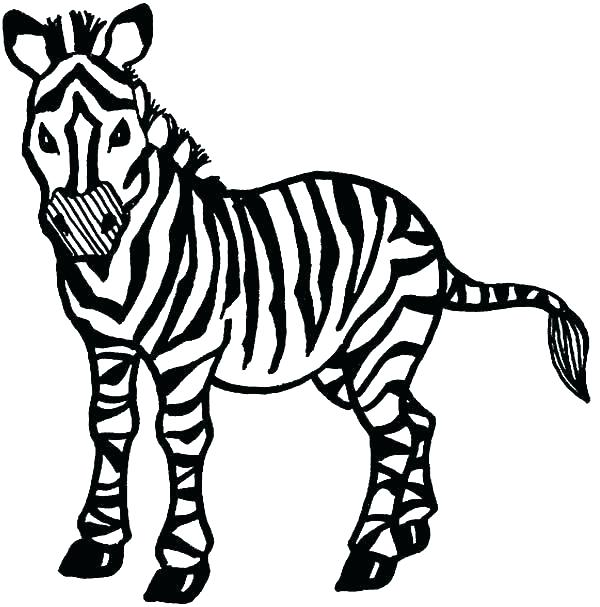 graphic regarding Zebra Printable called Zebra Coloring Webpages Totally free Printable at
