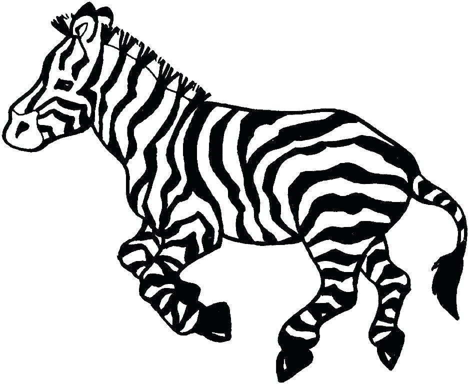 graphic regarding Zebra Coloring Pages Printable named Zebra Coloring Internet pages No cost Printable at