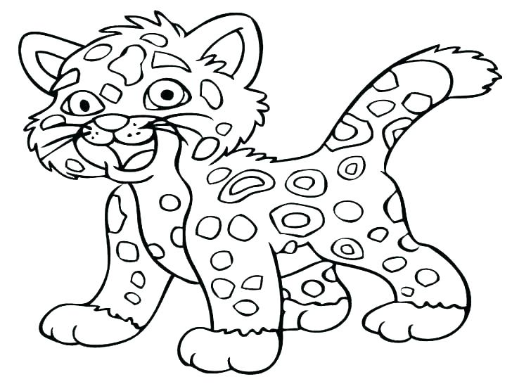 728x546 Baby Zebra Coloring Pages
