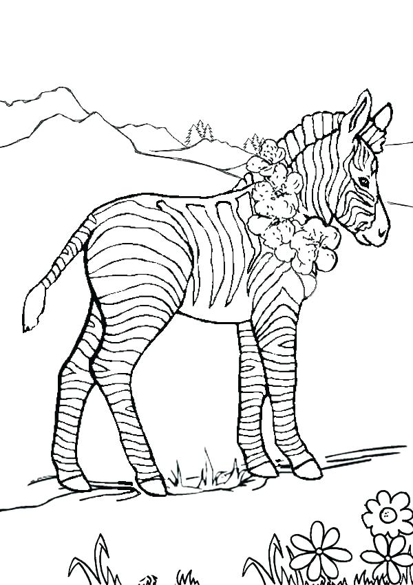 600x850 Zebra Print Coloring Pages