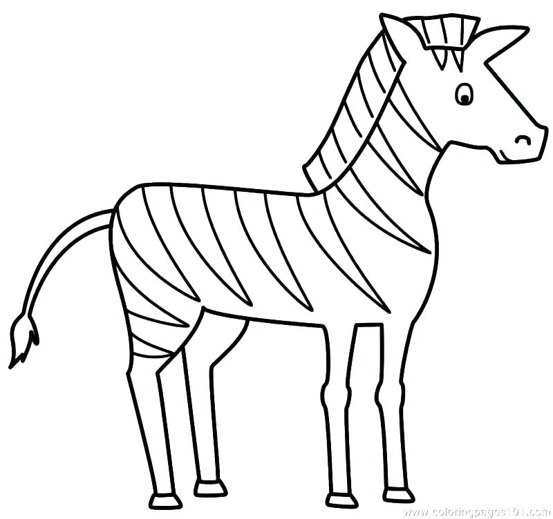 800x752 Coloring Book Zebra Zebra Color Page Zebra Print Coloring Pages