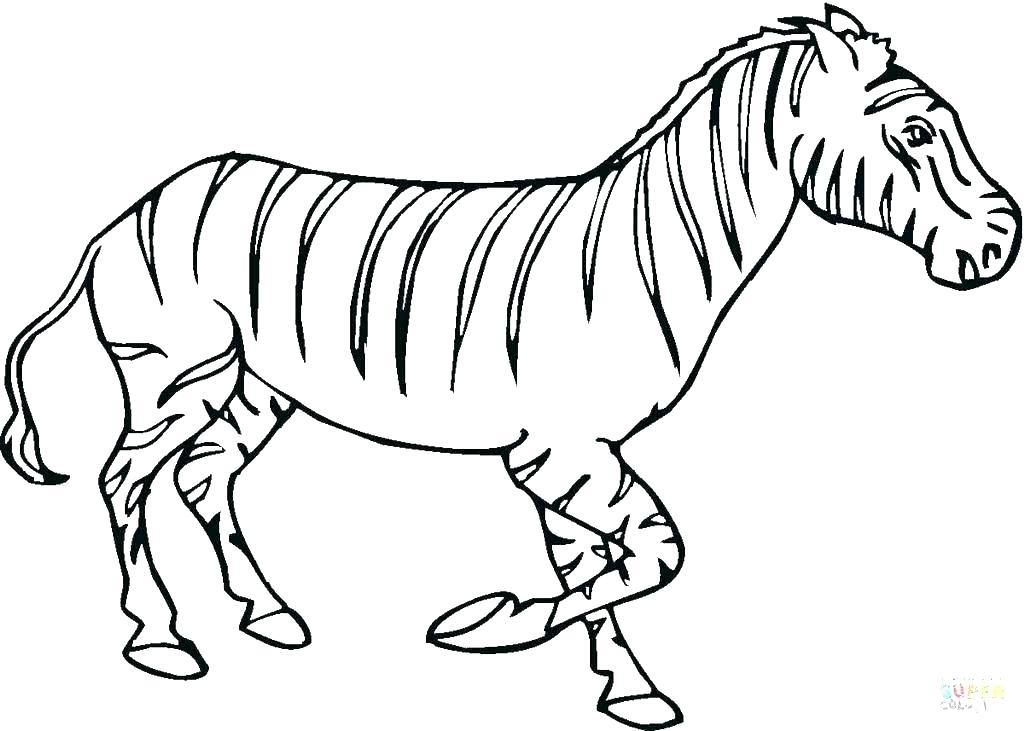 1024x731 Coloring Zebra Coloring Page Zebra Coloring Pages Zebra Zebra Free