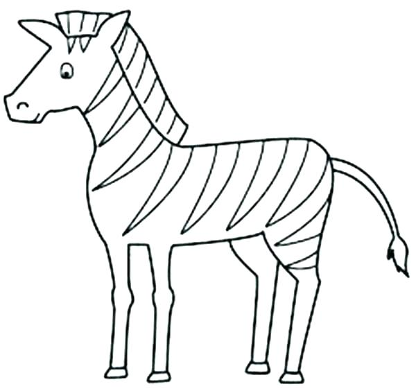 600x564 Zebra Coloring Pages Printable Printable Pictures Of Zebras