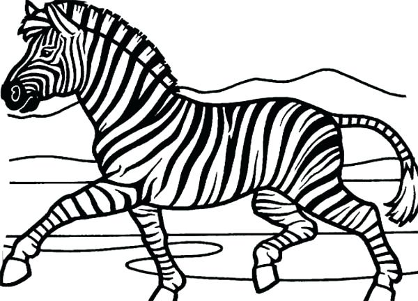 600x432 Zebra Coloring Picture Mesmerizing Zebra Coloring Pages