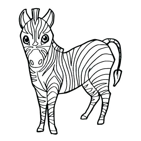 450x450 Zebra Coloring Page Zebra Coloring Page Zebras Pages Free Zebra