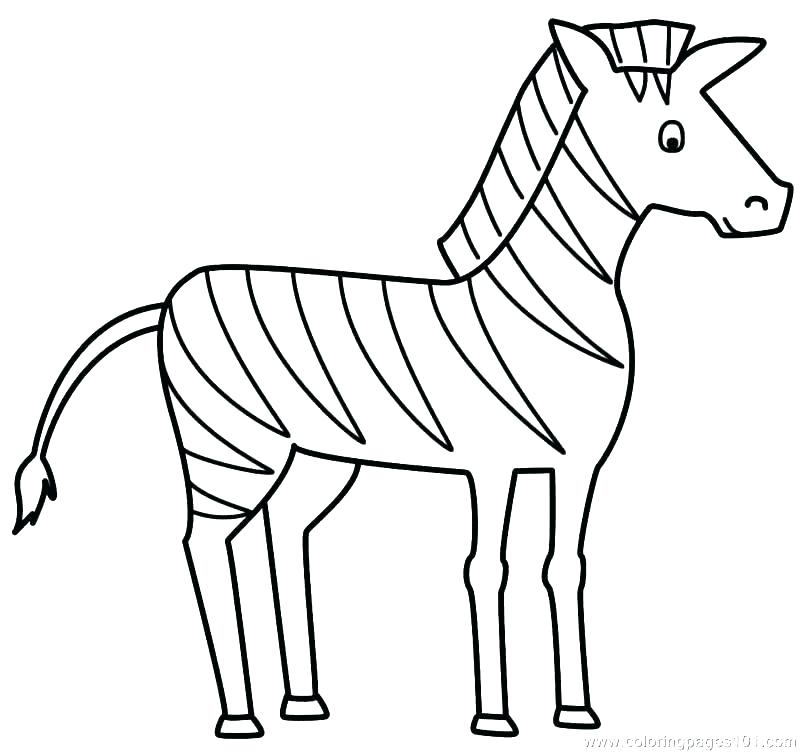 800x752 Coloring Pages Of Zebras Coloring Pages Of Zebras Baby Zebra