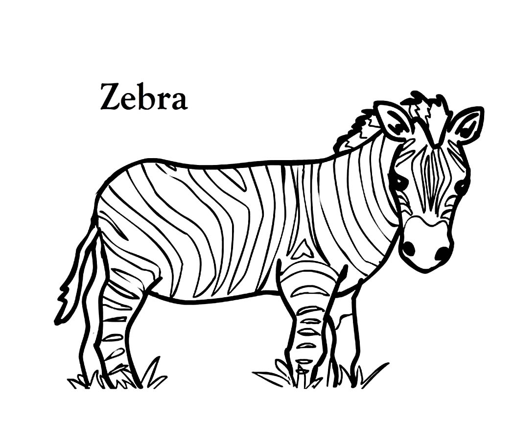 1050x866 Liberal Zebra Picture To Color Magic Coloring Sheet Emerging