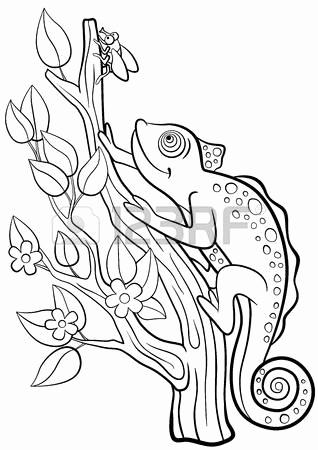 318x450 Zentangle Zebra Zebra Head Coloring Pages