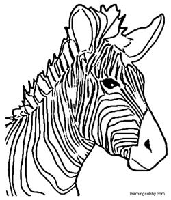 250x293 Best Photos Of Zebra Head Template