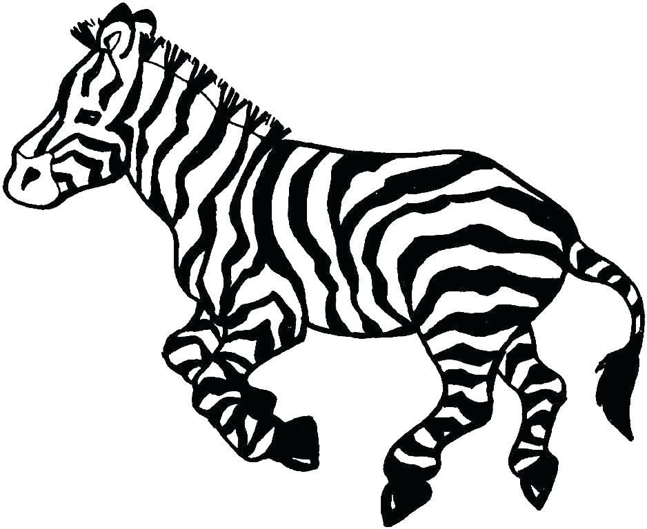 938x768 Zebra Coloring Pages Free Printable Animal Coloring Pages To Print