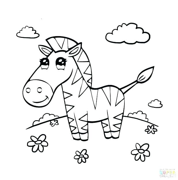 618x623 Baby Zebra Coloring Pages Zebra Colouring Pages For Adults Kids
