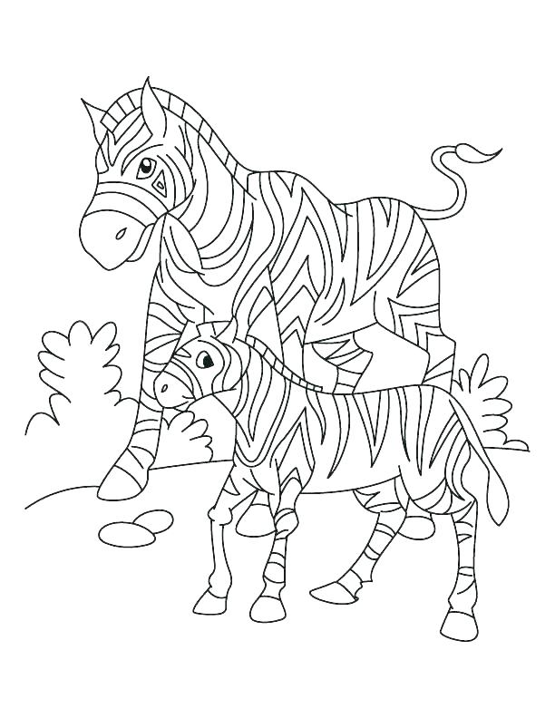 612x792 Zebra Print Coloring Pages Coloring Pages Of Zebras Coloring Pages