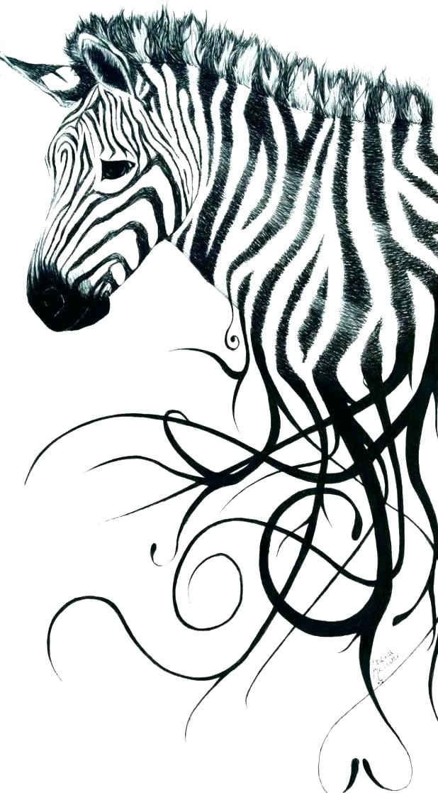 618x1117 Zebra Print Coloring Pages Detailed Animal Coloring Pages Zebra