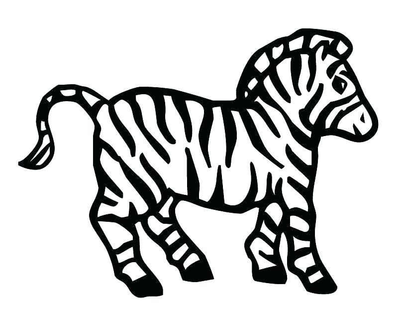 810x630 Zebra Print Coloring Pages Printable Zebra Print Stencil Coloring