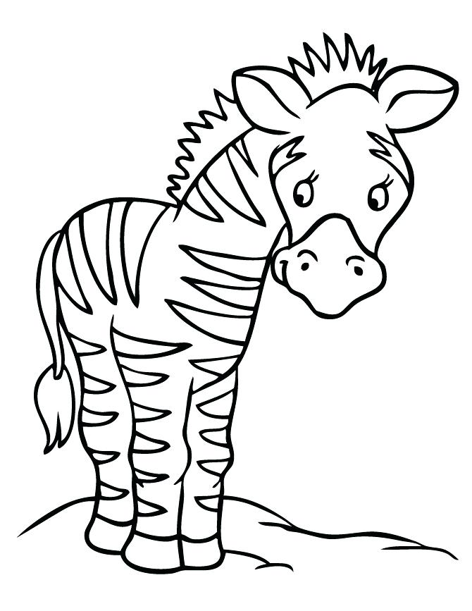 670x867 Zebra Print Coloring Pages Zebra Coloring Pictures To Print Free