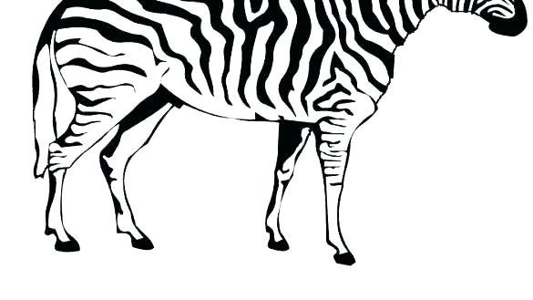 585x329 Zebra Print Coloring Pages Zebra Print Coloring Pages Zebra
