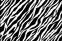 210x140 Zebra Print Coloring Pages Zebra Print Coloring Pages Coloring