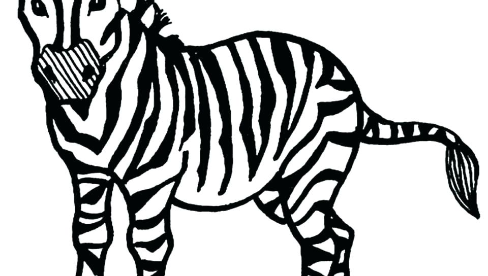 960x544 Zebra Coloring Pages