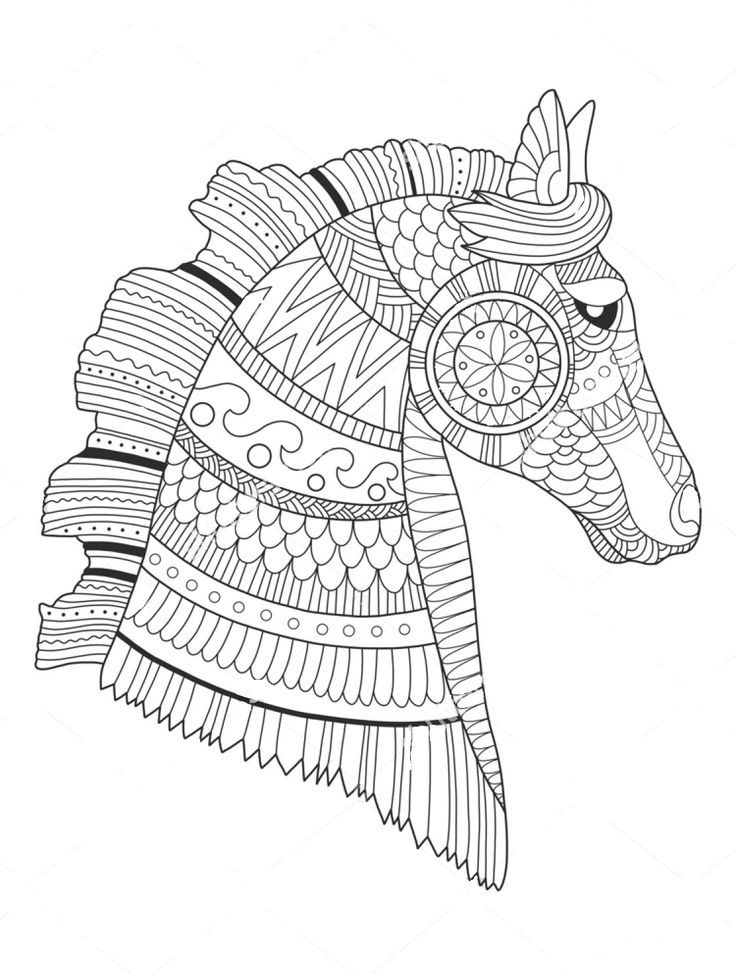 736x974 Majestic Looking Zentangle Coloring Pages Best Animal Images