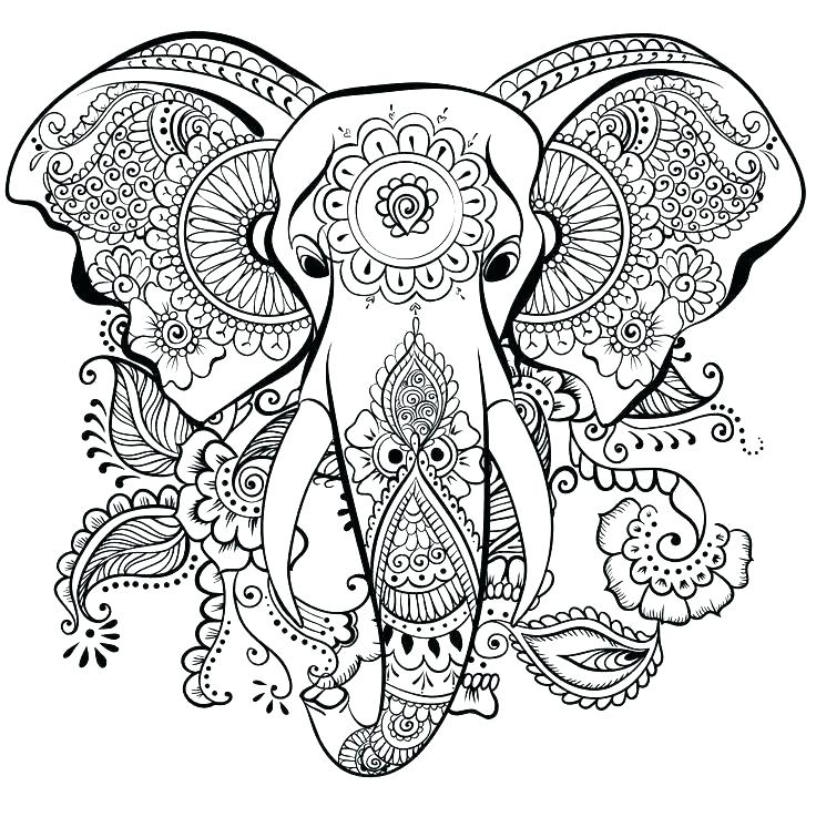 736x737 Zentangle Coloring Pages Elephant Animal Coloring Pages Zentangle
