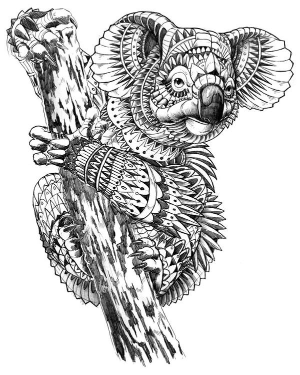 600x749 Inspiration Koalas, Coloring Pages And Coloring