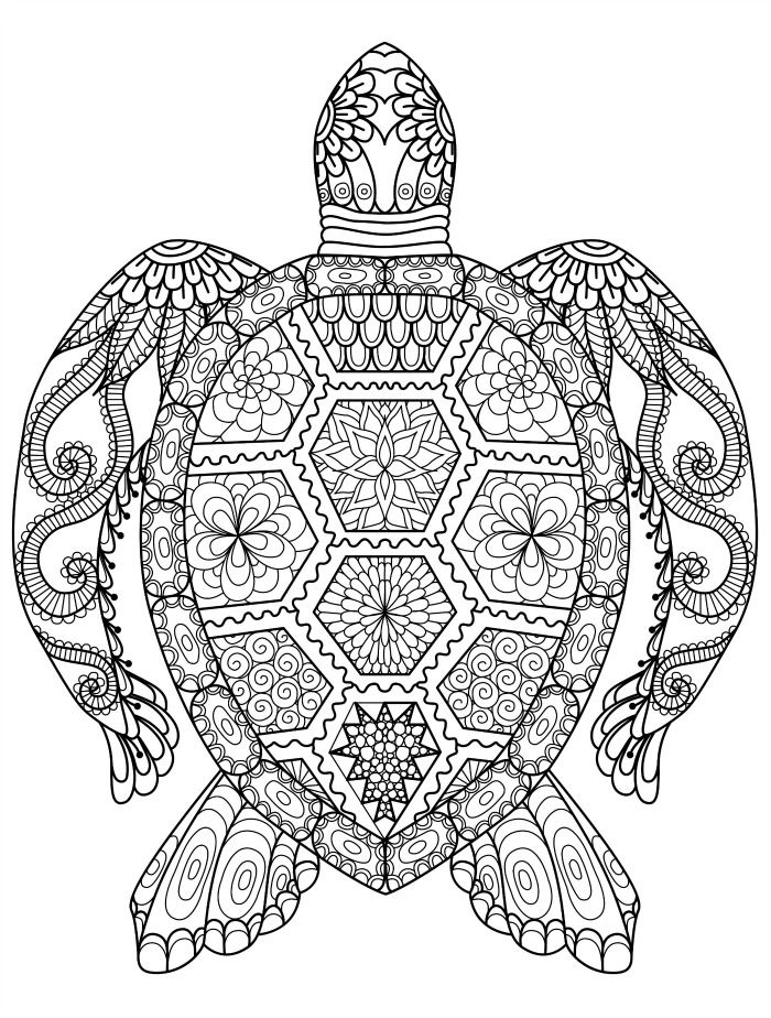 700x924 Sea Turtle Coloring Page For Adults For Free Download Crafty
