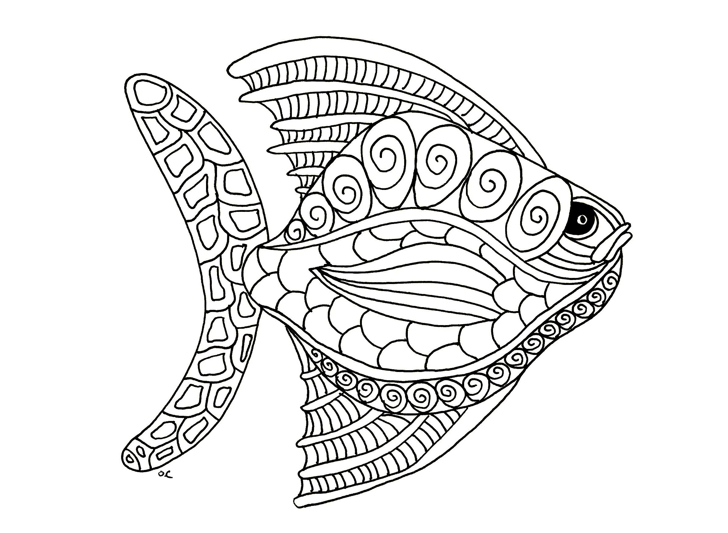 2392x1751 Appealing Best Turtle Zentangle Coloring Page Of Animal Popular