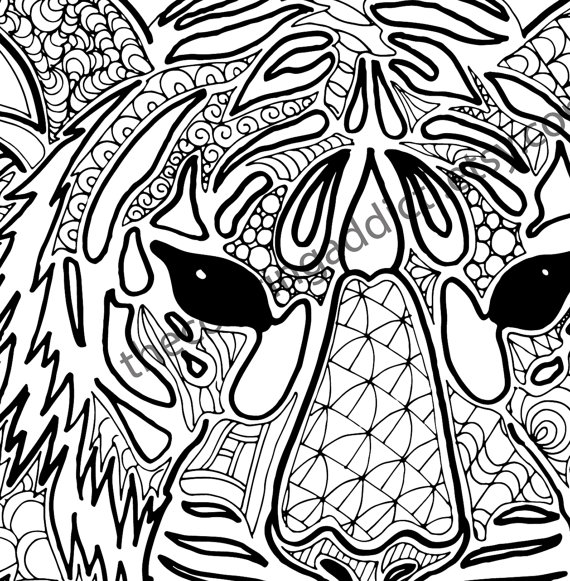 570x581 Tiger Coloring Pages Pdf Tiger Coloring Pages Tiger Coloring Pages