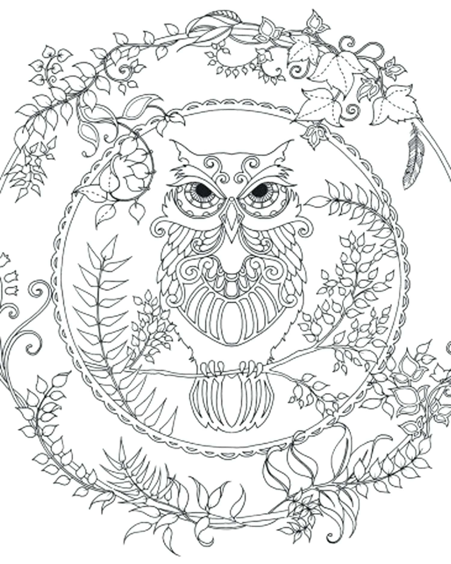1500x1874 Owl Zentangle Coloring Page To Color Gallery