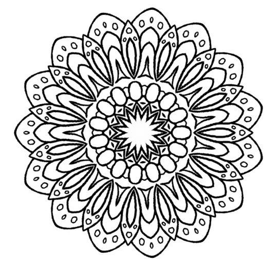 543x515 Small Flower Zentangle Mandala Doodle Drawing
