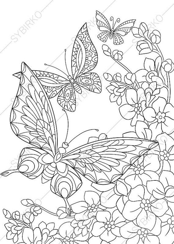 570x798 Adult Coloring Pages Butterflies Zentangle Doodle Coloring