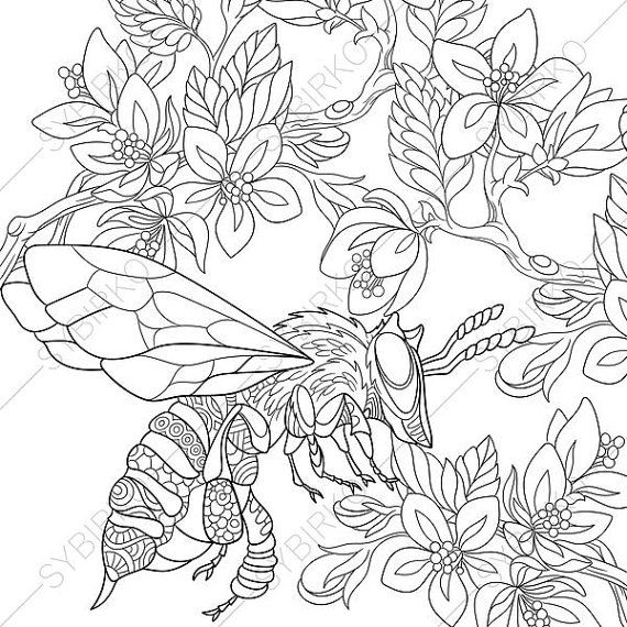 570x570 Coloring Pages Bee Zentangle Doodle Coloring Book Pages