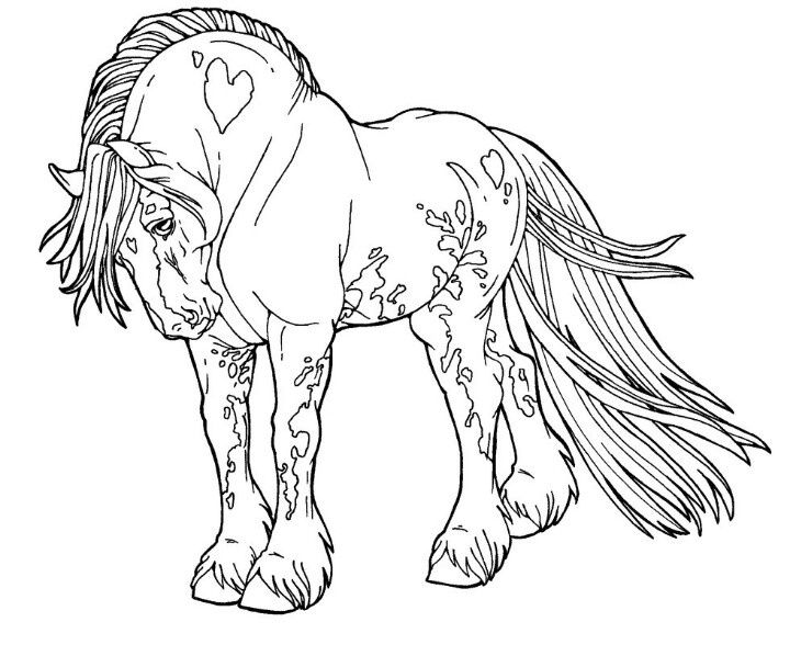 720x598 Horse Coloring Pages For Adults